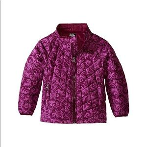 THE NORTH FACE Toddler Thermoball Full Zip Jacket